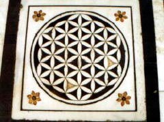 Flower of Life i Amistar, Indien